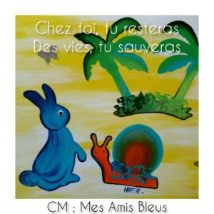 amis bleus